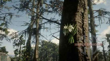 Lady of the night Orchid in RDR 2