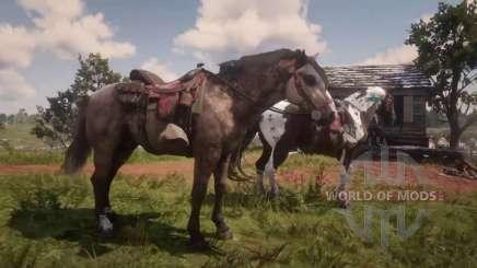 Saddles in RDR 2