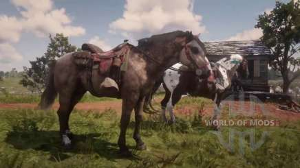 Two horses on the hunt in RDR 2