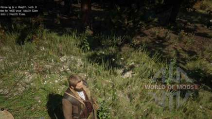 Indian tobacco in RDR 2