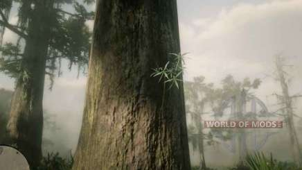 Rat tail Orchid in RDR 2