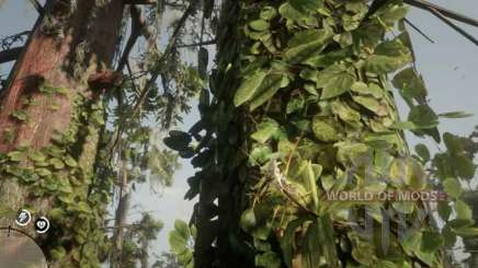 Spider Orchid in RDR 2