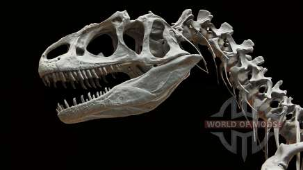 Dinosaur bones in RDR 2