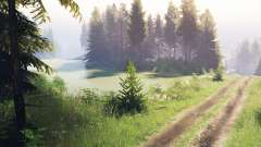 Pine forest 2 v1.3 for Spin Tires