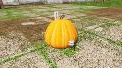Pumpkin weight for Farming Simulator 2017