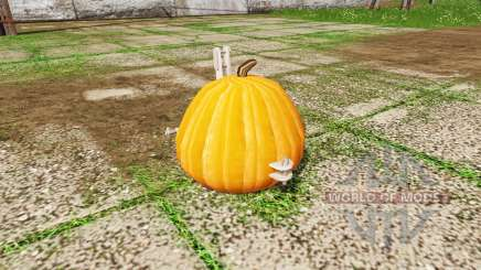 Pumpkin weight for Farming Simulator 2017