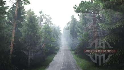 Forest for Spin Tires