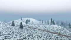 Siberia for Spin Tires