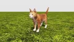 Cat for Farming Simulator 2017