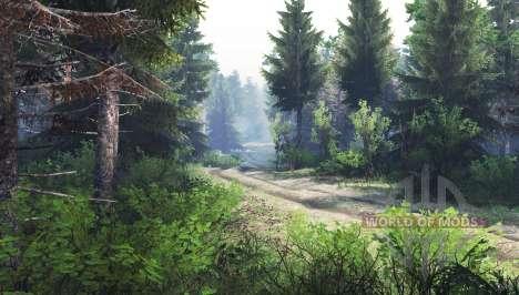 Forest v1.1 for Spin Tires
