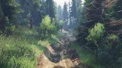 Bear trail v2.0
