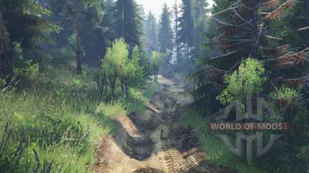 Bear trail v2.0 for Spin Tires