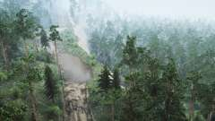 Siberian Forest 3
