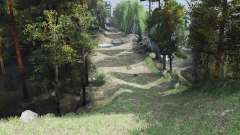 Small Borneo for Spin Tires