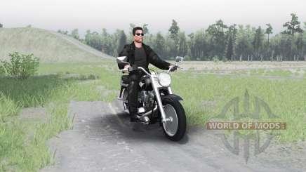 Harley-Davidson FLSTF Fat Boy for Spin Tires