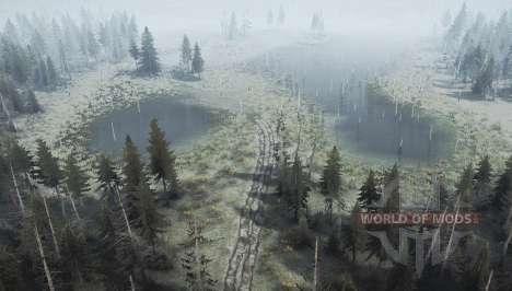 Felling skidder zone v1.4 for Spintires MudRunner