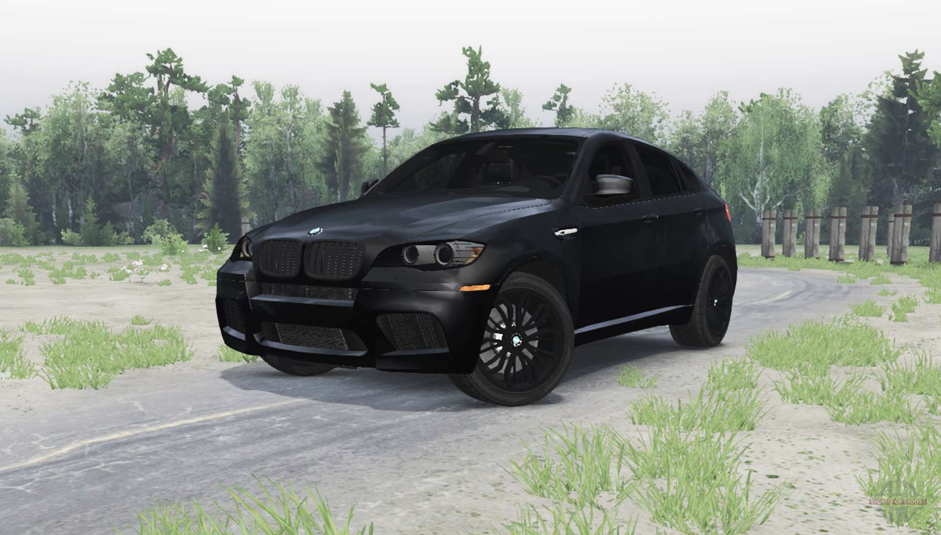 Bmw X6 M For Spin Tires