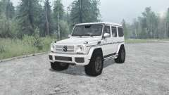 Mercedes-Benz G 65 AMG (W463) for MudRunner