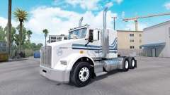 MTV skin for Kenworth T800 truck