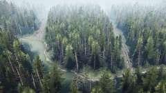 Pine forest 2 v1.1 for MudRunner