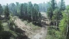 Birch grove for MudRunner