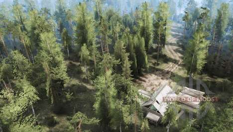 Forest 2 for Spintires MudRunner