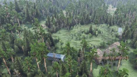 Forestry Pushkino for Spin Tires