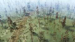 The swamp for MudRunner