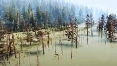 Through the swamp for MudRunner
