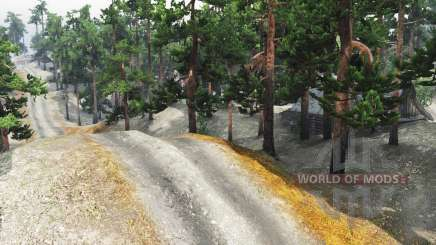 Pine trails for Spin Tires
