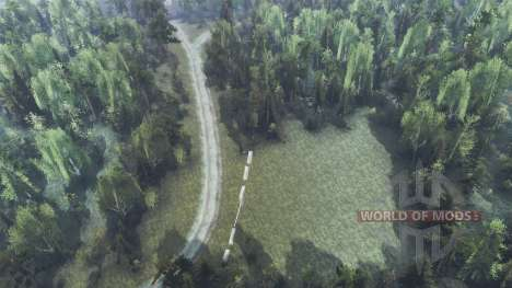 The dense forest for Spin Tires