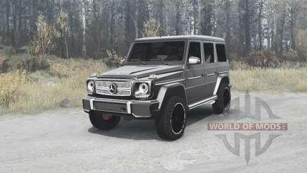 Mercedes-Benz G65 AMG (W463) for MudRunner