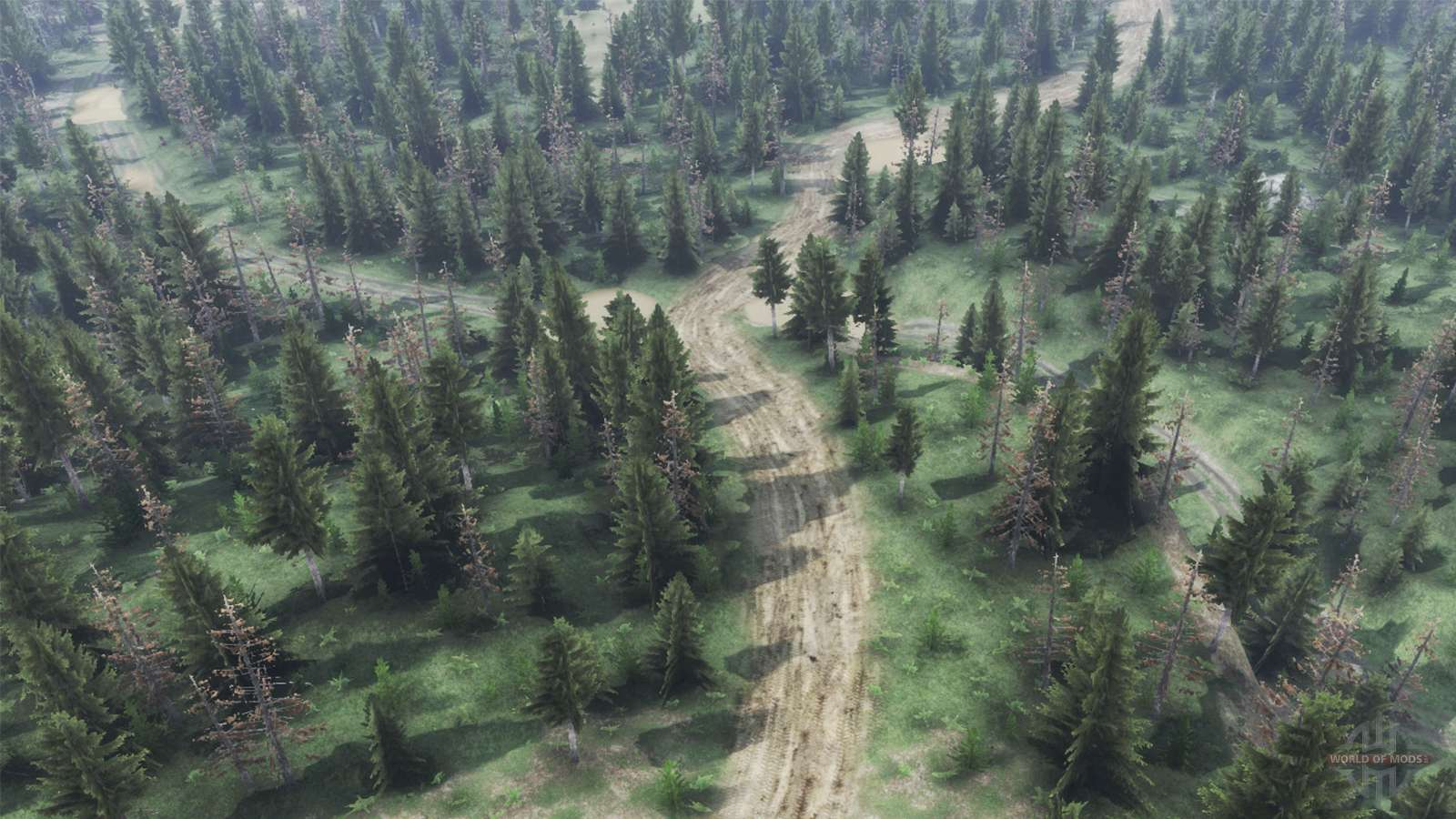 Creepy Forest for Spin Tires