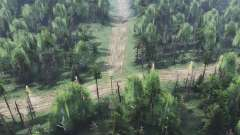 Dry forest v2.0 for Spin Tires