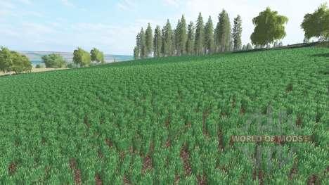 Agra Sanov for Farming Simulator 2017