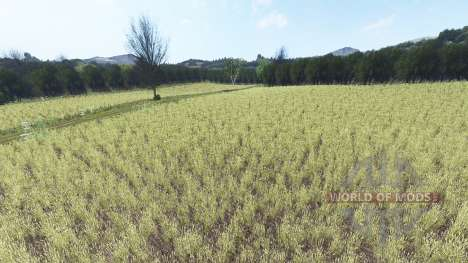 Poniatow for Farming Simulator 2017