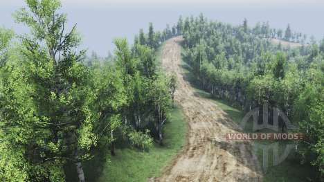Logging for Spin Tires