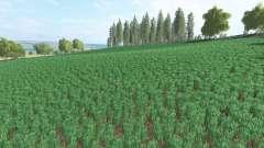 Agra Sanоv for Farming Simulator 2017