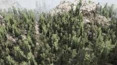 WoodsLight for MudRunner